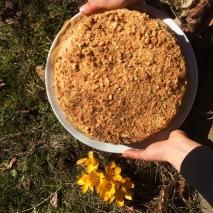 Böhmisk honungkaramellkaka // Bohemian honey caramel cake